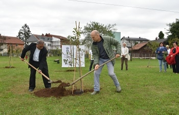 Tree planting to mark 150th Birth Anniversary of Mahatma Gandhi